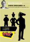 Chess Endgames 14 - The golden guidelines of endgame play