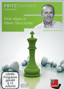 First steps in pawn structures
