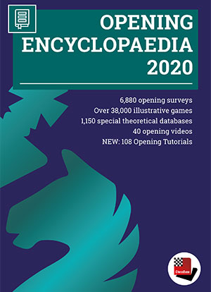 Opening Encyclopaedia 2020 upgrade from 2019