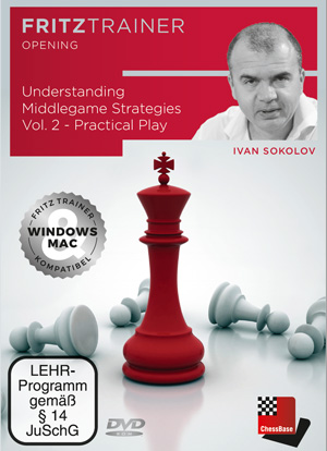 Understanding Middlegame Strategies Vol.2 - Practical Play